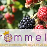 Wâldpyk bramenfestijn Brommels! 2018